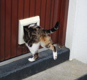 The Original Netcat Backdoor